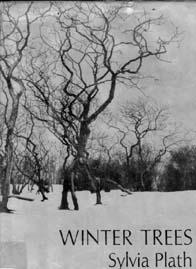 Book cover of Winter Trees